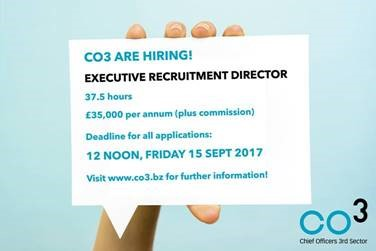 co3 Hiring Exec Recruitment Director